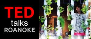TED_Talks_Roanoke_2015-01-28